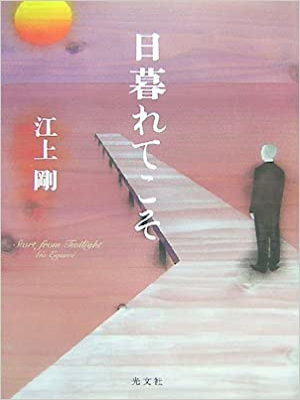 Go Egami [ Higuretekoso ] Fiction JPN 2007 HB